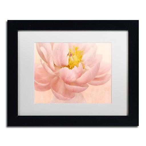 "Trademark Fine Art Cora Niele 'Pink Peony' 11"" x 14"" Matted Framed (190836259502)"