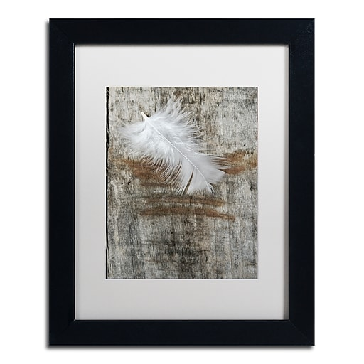 """Trademark Fine Art Cora Niele 'White Feather on Wood' 11"""" x 14"""" Matted Framed (190836255948)"""