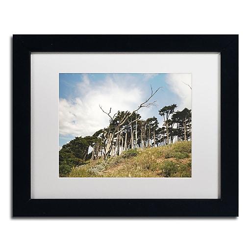 "Trademark Fine Art Ariane Moshayedi 'Presidio Trees' 11"" x 14"" Matted Framed (190836273928)"