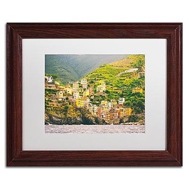 Trademark Fine Art Ariane Moshayedi 'Cinque Terre' 11