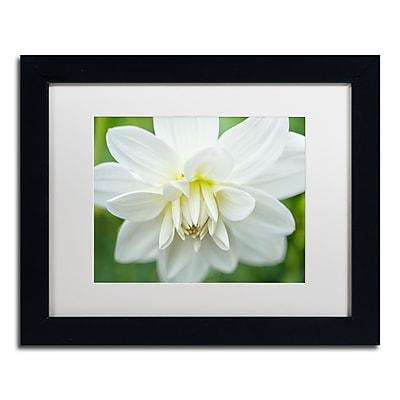Trademark Fine Art Cora Niele 'White Dahlia' 11