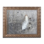 "Trademark Fine Art Cora Niele 'Feather on Rough Wood'd Art 16"" x 20"" Ornate Frame (190836255313)"