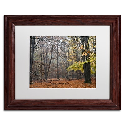 "Trademark Fine Art Cora Niele 'Hazy Wood' 11"" x 14"" Matted Framed (190836316489)"
