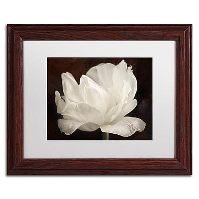 Trademark Fine Art Cora Niele 'White Tulip III' 11