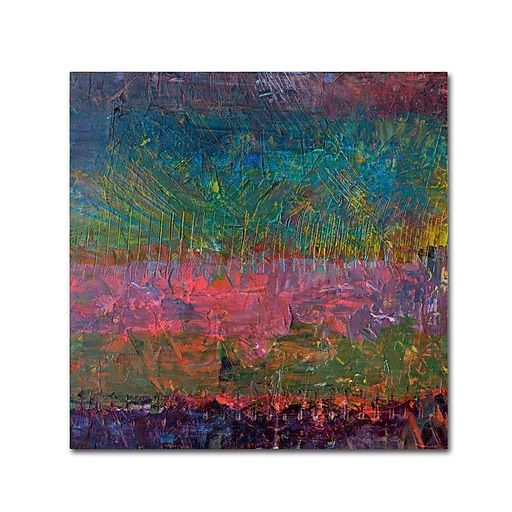 "Trademark Fine Art Michelle Calkins 'Wildflowers' 18"" x 18"" Canvas Stretched (190836070237)"