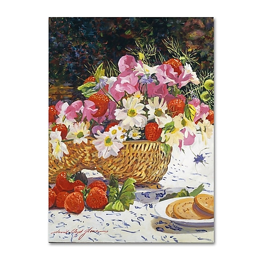 "Trademark Fine Art David Lloyd Glover 'The Summer Picnic' 14"" x 19"" Canvas Stretched (190836188123)"