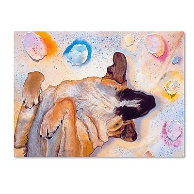 Trademark Fine Art Pat Saunders-White 'Dog Dreams' 14