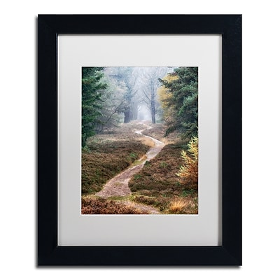 Trademark Fine Art Cora Niele 'Hiking Trail' 11