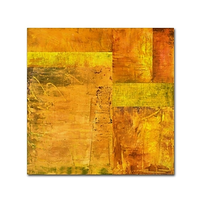 Trademark Fine Art Michelle Calkins 'Essence of Yellow 2' 18