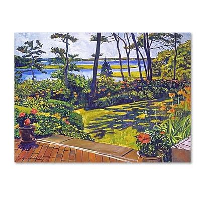 Trademark Fine Art David Lloyd Glover 'Ocean Lagoon Garden' 14