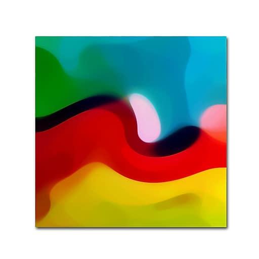 "Trademark Fine Art Amy Vangsgard 'Moon Resting 1' 14"" x 14"" Canvas Stretched (886511934351)"