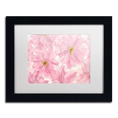 Trademark Fine Art Cora Niele 'Pink Cherry Blossom' 11