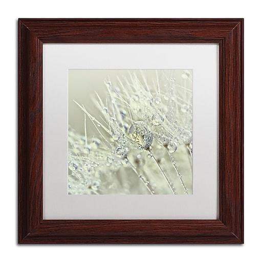 "Trademark Fine Art Cora Niele 'Dandelion Dew III' 11"" x 11"" Matted Framed (190836251728)"