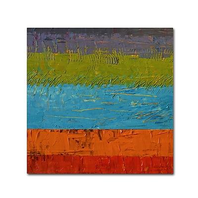 Trademark Fine Art Michelle Calkins 'Wetlands' 18