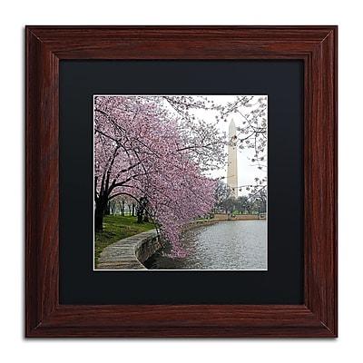 Trademark Fine Art CATeyes 'Washington Blossoms' 11
