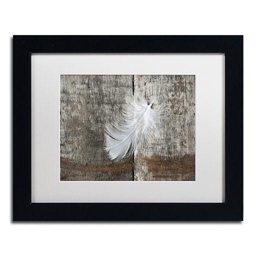 """Trademark Fine Art Cora Niele 'White Feather on Rough Wood' 11"""" x 14"""" Matted Framed (190836255801)"""