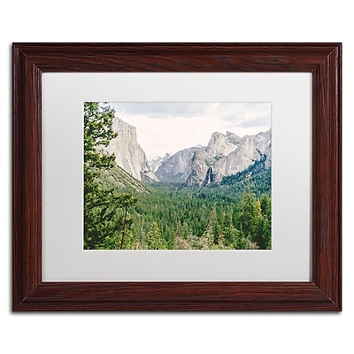Trademark Fine Art Ariane Moshayedi 'Yosemite Valley' 11