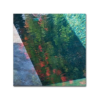 Trademark Fine Art Kurt Shaffer 'Inspired by Monet' 18