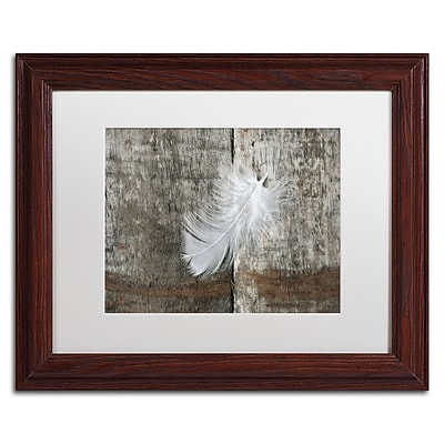 Trademark Fine Art Cora Niele 'White Feather on Rough Wood' 11
