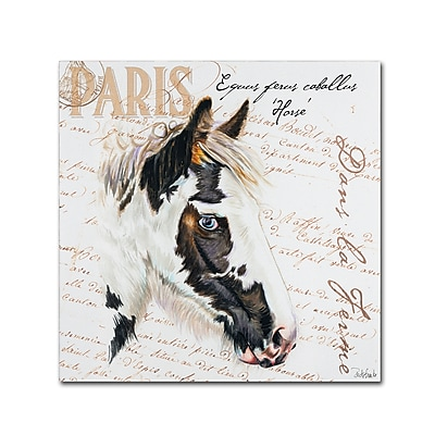 Trademark Fine Art Jennifer Redstreake 'Dans la Ferme Horse' 14
