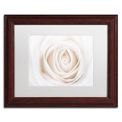 Trademark Fine Art Cora Niele 'White Rose' 11