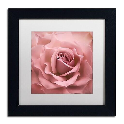 """Trademark Fine Art Cora Niele 'Misty Rose Pink Rose' 11"""" x 11"""" Matted Framed (190836258185)"""