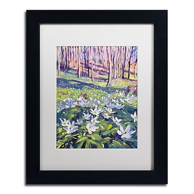 """Trademark Fine Art David Lloyd Glover 'Anemones in the Meadow' 11"""" x 14"""" Matted Framed (190836227921)"""
