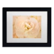 "Trademark Fine Art Cora Niele 'Amber Begonia Flower' 11"" x 14"" Matted Framed (190836256082)"