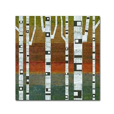 Trademark Fine Art Michelle Calkins 'Birches' 18