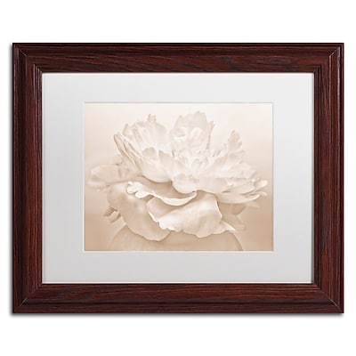 Trademark Fine Art Cora Niele 'White Peony' 11