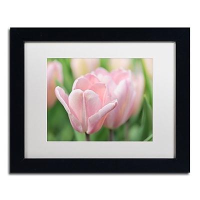 Trademark Fine Art Cora Niele 'Pink Tulip Baronesse' 11