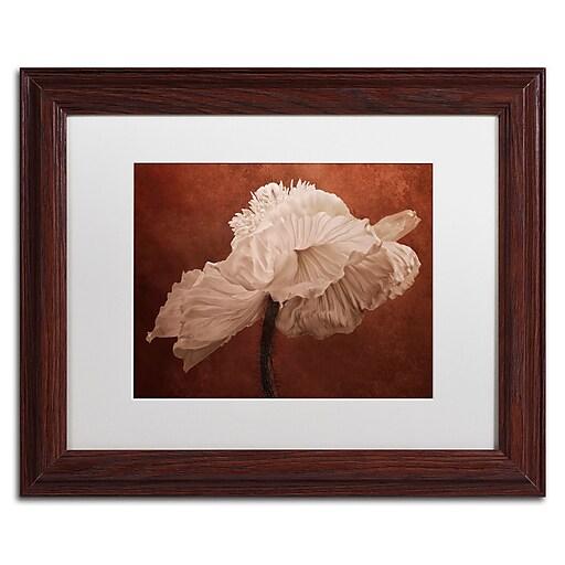 """Trademark Fine Art Cora Niele 'White Poppy' 11"""" x 14"""" Matted Framed (190836311446)"""
