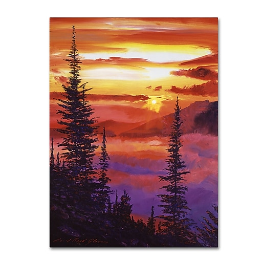 "Trademark Fine Art David Lloyd Glover 'Golden Moment' 14"" x 19"" Canvas Stretched (190836225422)"