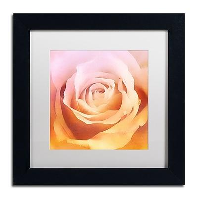 Trademark Fine Art Adam Kadmos 'Rosie' 11