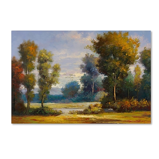 "Trademark Fine Art Daniel Moises 'Memory Lane' 12"" x 19"" Canvas Stretched (190836189526)"
