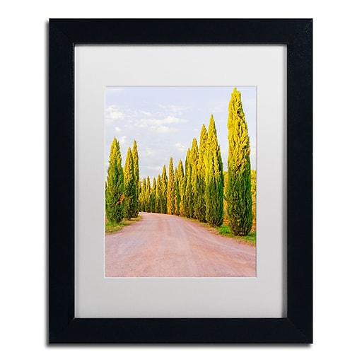 "Trademark Fine Art Ariane Moshayedi 'Italian Cypress Trees' 11"" x 14"" Matted Framed (190836268887)"