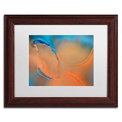 Trademark Fine Art Cora Niele 'Blue and Orange Flow' 11