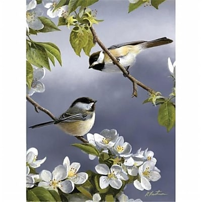 Reeves Medium Painting By Numbers Spring Chicadee (ALV20716) 2598083