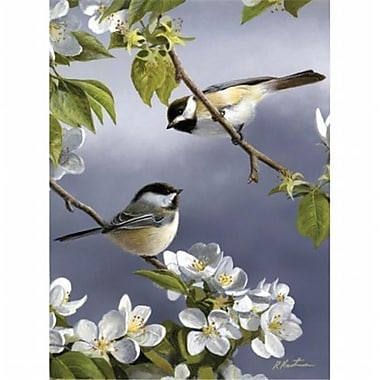 Reeves Medium Painting By Numbers Spring Chicadee (ALV20716)