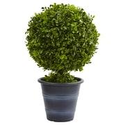 "Nearly Natural 23"" Boxwood Ball Topiary (4560)"