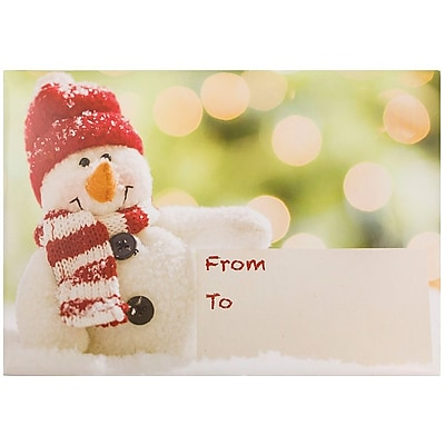 JAM Paper® Bubble Mailers, Large, 10.5 x 16, Festive Snowman, 6/pack (526SSDE535L)