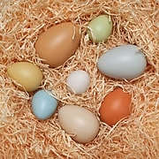 Yellow Door Size-Sorting Eggs, Set of 8 (YUS1088)