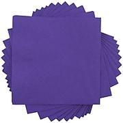 JAM Paper Medium Lunch Napkins, 2-Ply, Purple, 480 Napkins/Box (6255620728b)