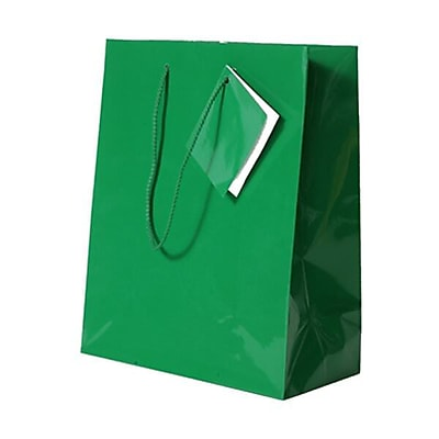 JAM Paper Glossy Gift Bags, Medium, 8