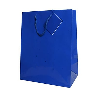 JAM Paper® Glossy Gift Bags, Large, 10 x 13 x 5, Blue, 10 x 13 x 5, 6/pack (673GLbua)