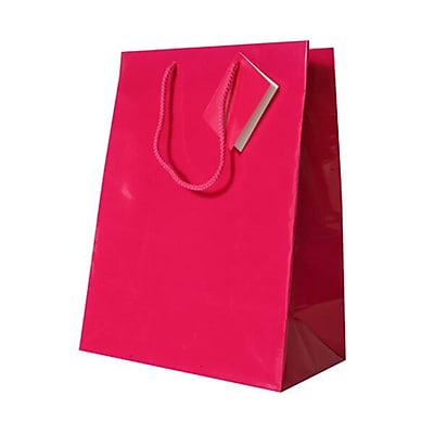 JAM Paper® Glossy Gift Bags, Large, 10 x 13 x 5, Fuchsia Hot Pink, 6/pack (673GLfua)