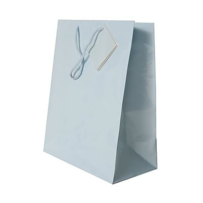 JAM Paper® Glossy Gift Bags, Large, 10 x 13 x 5, Baby Blue, 6/pack (673GLbba)