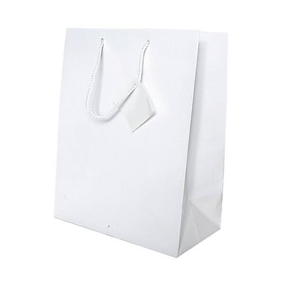 JAM Paper® Glossy Gift Bags, Large, 10 x 13 x 5,White, 6/pack (673GLwha)