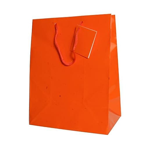 JAM Paper® Glossy Gift Bags with Rope Handles, Large, 10 x 5 x 13, Orange, 6 Bags/Pack (673GLora)