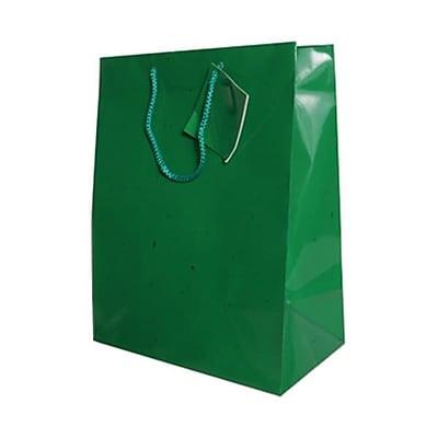 JAM Paper® Glossy Gift Bags, Large, 10 x 13 x 5, Green, 6/pack (673GLgra)